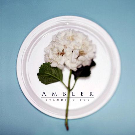 스탠딩에그(STANDING EGG) - AMBLER